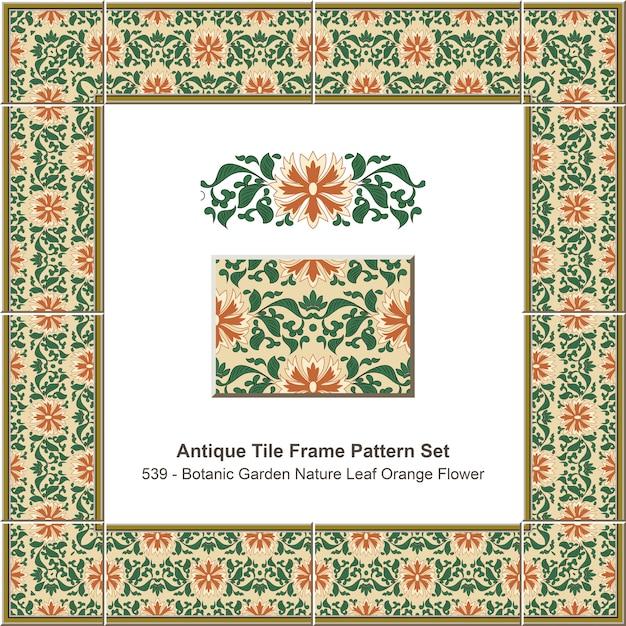 Conjunto de padrão de moldura de azulejos antigos jardim botânico natureza folha flor de laranjeira Vetor Premium