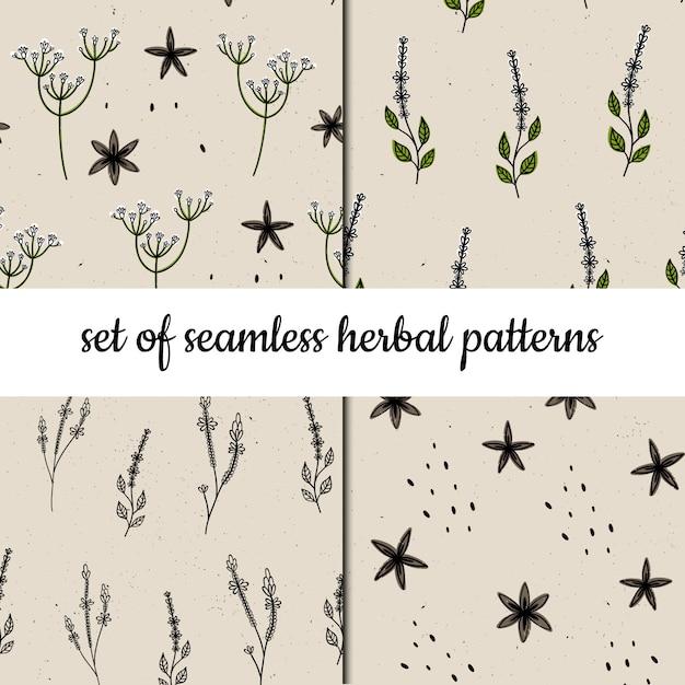 Conjunto de padrões sem emenda de vetores. ervas e plantas. Vetor Premium