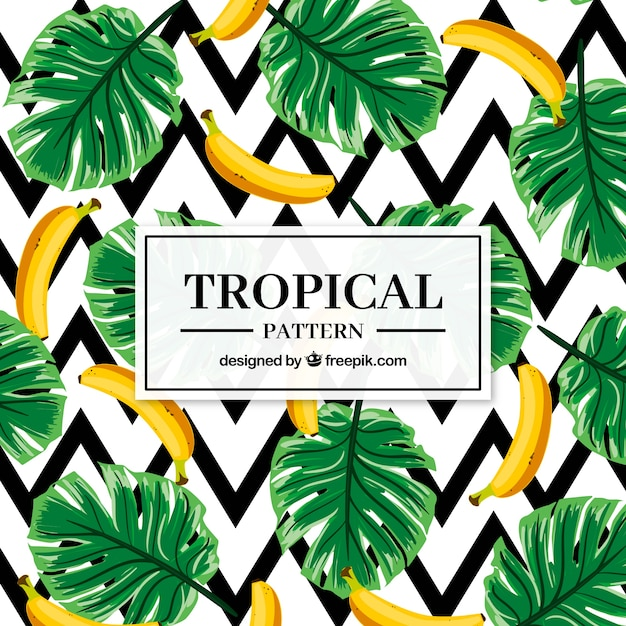 Conjunto de padrões tropicais com bananas em estilo simples Vetor grátis