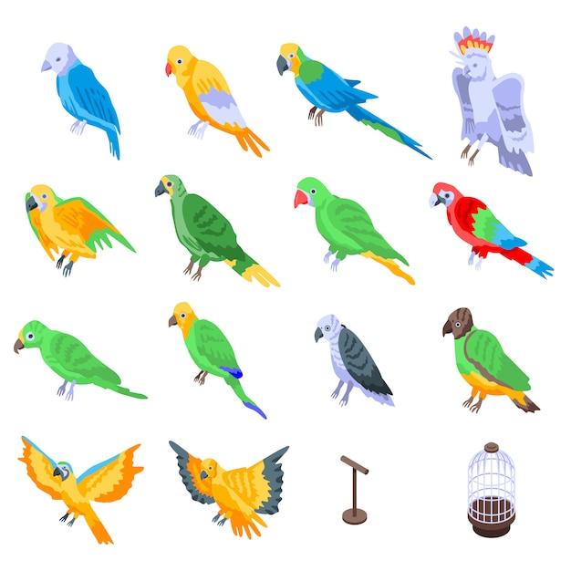 Conjunto de papagaio, estilo isométrico Vetor Premium