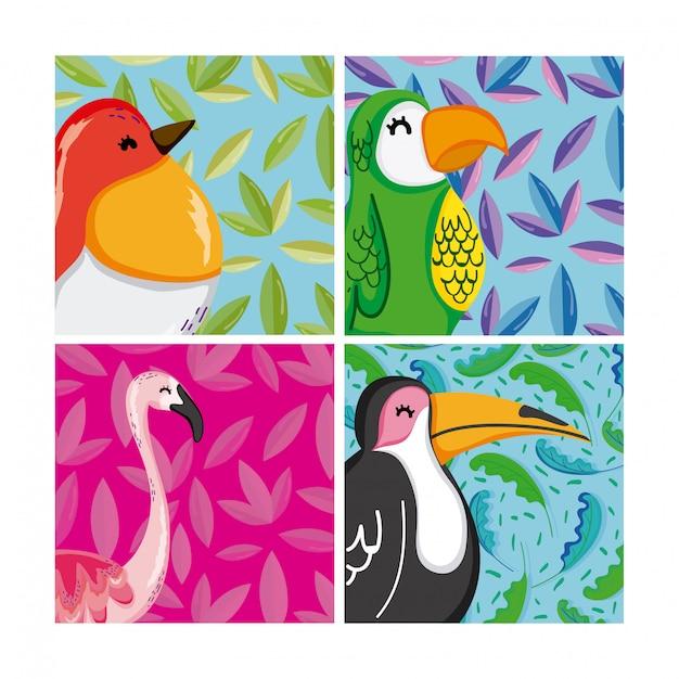 Conjunto de pássaros exóticos Vetor Premium