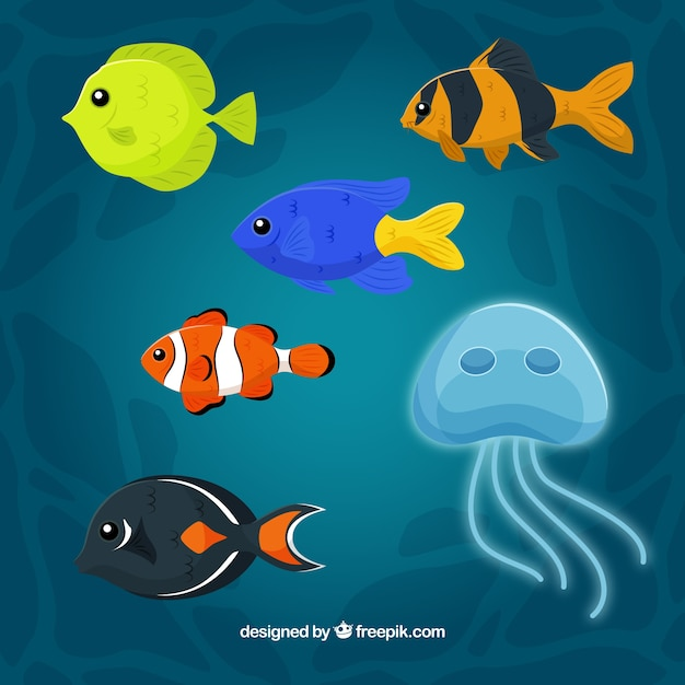 Conjunto de peixes coloridos em diferentes espécies Vetor grátis