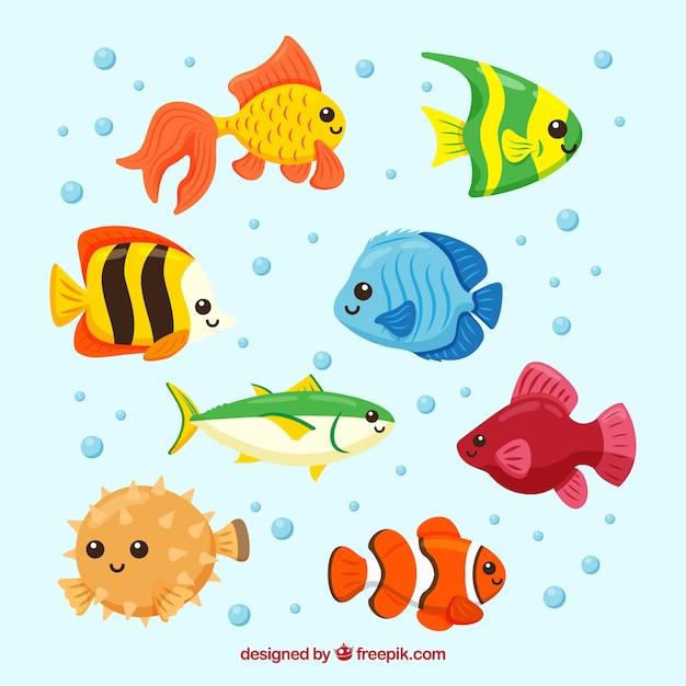 Peixes Baixe Vetores Fotos E Arquivos Psd Gratis