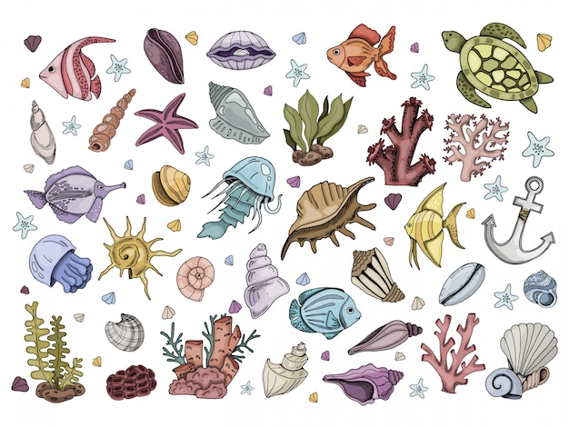Conjunto de peixes, conchas, corais, animais marinhos Vetor Premium