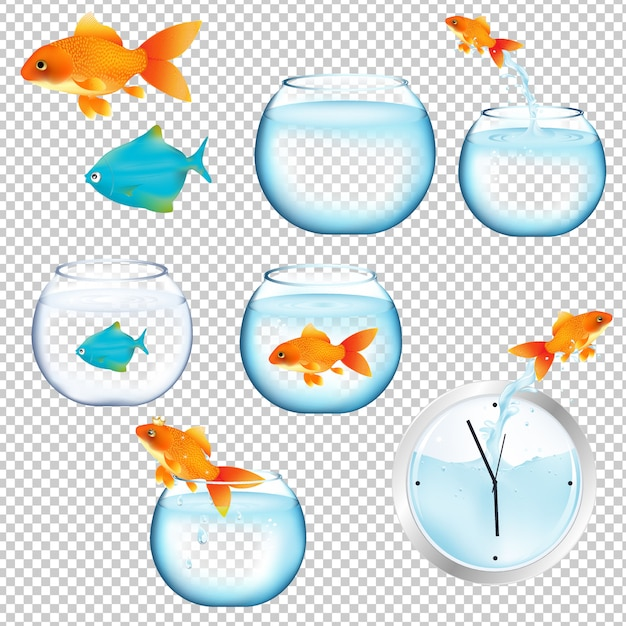 Conjunto de peixes e aquários Vetor Premium