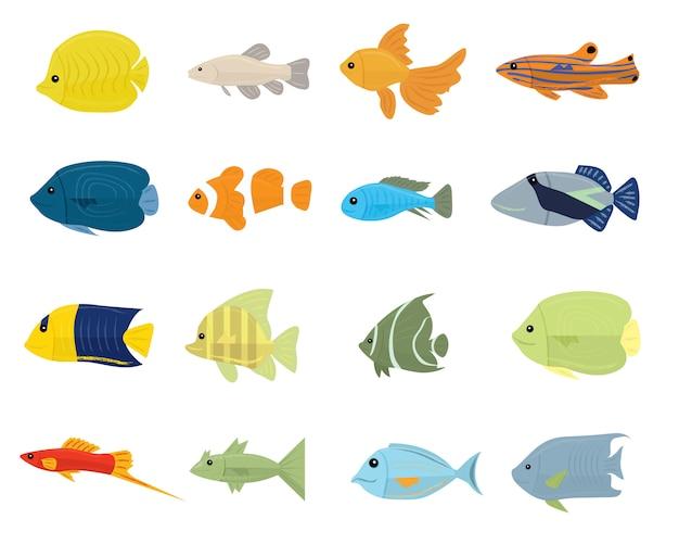 Conjunto de peixes tropicais em branco Vetor Premium
