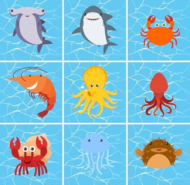 Conjunto de personagem de criatura do mar Vetor Premium