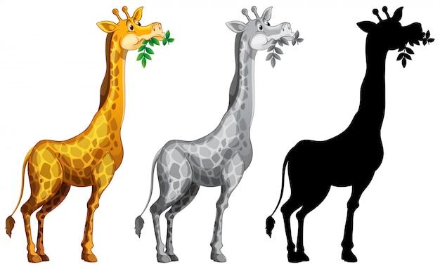 Conjunto de personagem de girafa Vetor grátis