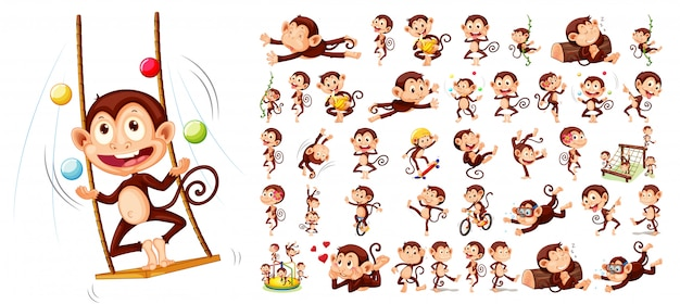 Conjunto de personagem de macaco Vetor grátis