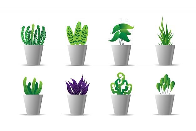 Conjunto de planta verde no pote branco Vetor Premium