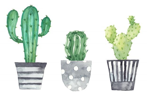 Conjunto de plantas em vasos pintados em aquarela. elementos frescos isolados em um fundo branco. conjunto de plantas em vasos Vetor Premium