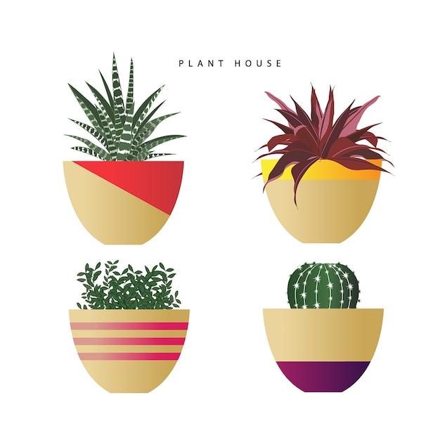 Conjunto de plantas no vetor de potes Vetor Premium