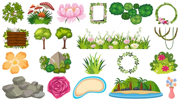 Conjunto de plantas ornamentais Vetor Premium