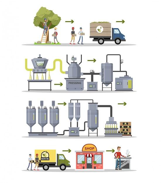 Conjunto de produção de azeite. das árvores às garrafas. Vetor Premium