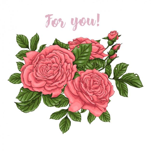Conjunto de rosas corais. desenho à mão Vetor Premium