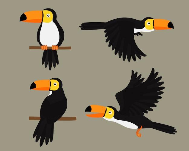 Conjunto de tucanos pássaro personagem dos desenhos animados Vetor Premium