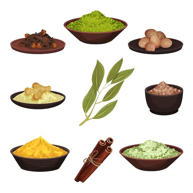 Conjunto de várias especiarias naturais. temperos aromáticos para alimentação. ingredientes para cozinhar. tema culinário Vetor Premium