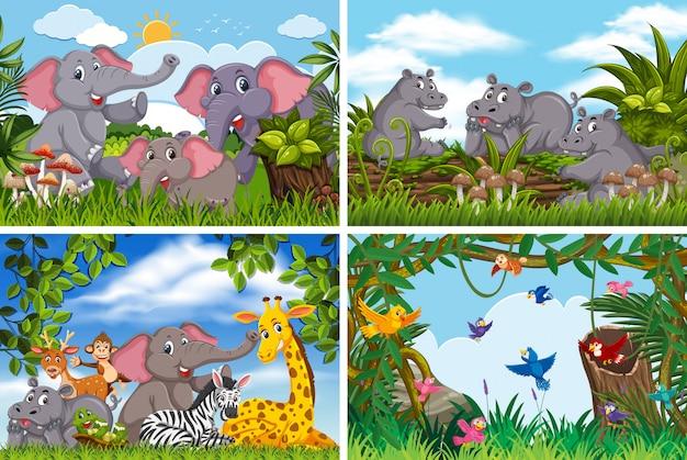 Conjunto de vários animais em cenas da natureza Vetor Premium