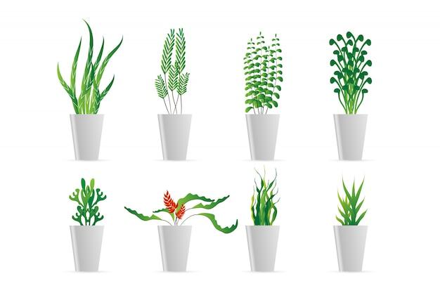 Conjunto de vaso verde no apartamento Vetor Premium