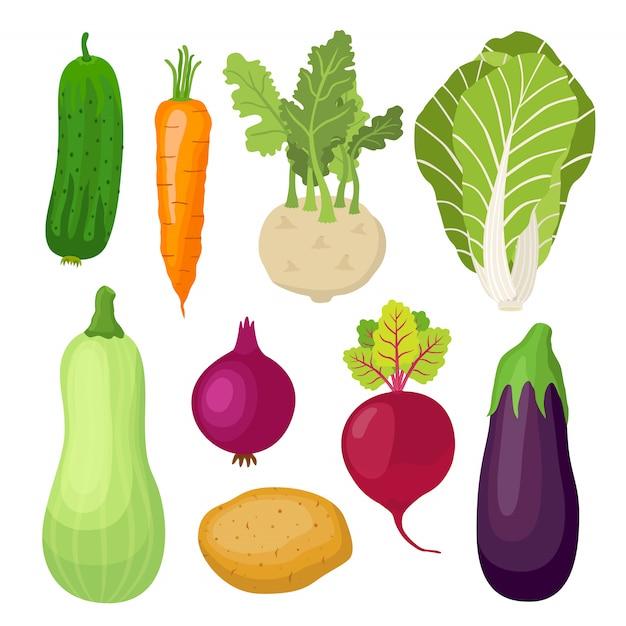 Conjunto de vegetais para jardim Vetor Premium