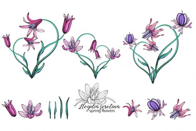 Conjunto de vetores de flores delicadas da primavera. flores. flores da primavera. coração de flores. Vetor Premium