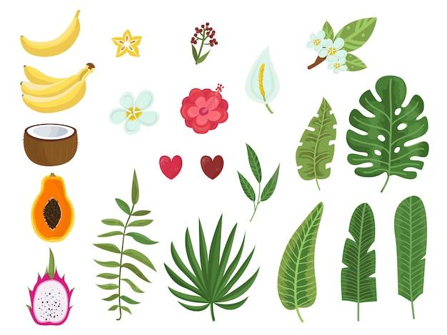 Conjunto de vetores de folhas tropicais, flores e frutas Vetor Premium