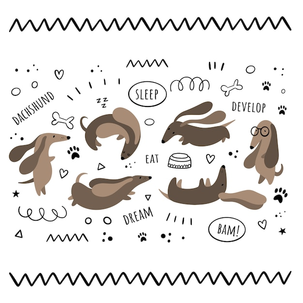 Conjunto de vetores de isolados por dachshunds. сartoon, estilos do doodle Vetor Premium