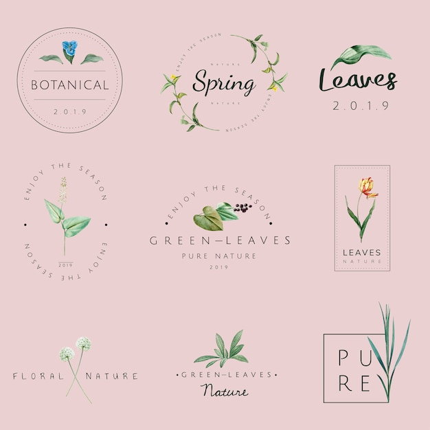 Conjunto de vetores de logotipo de natureza e planta Vetor grátis