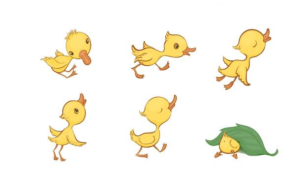 Conjunto de vetores de patinhos bonito engraçado amarelo dos desenhos animados Vetor Premium