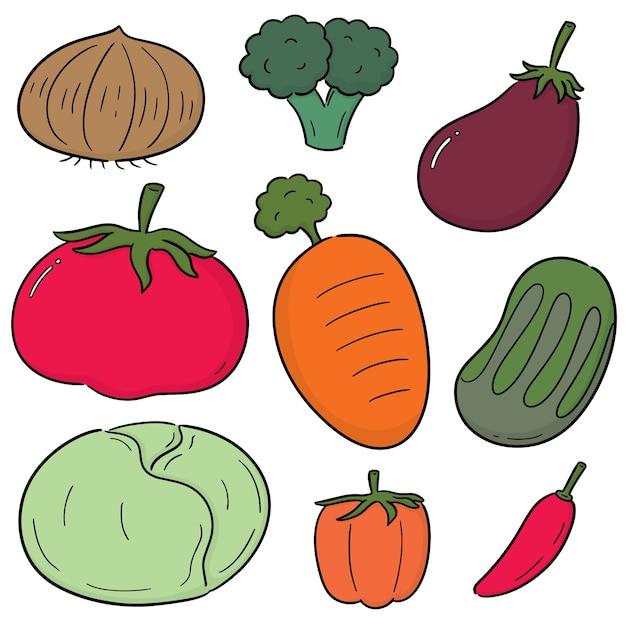 Conjunto de vetores de vegetais Vetor Premium