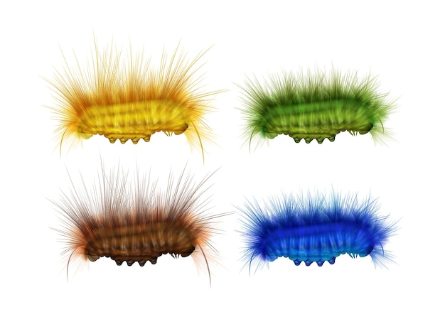 Conjunto de vetores de vista lateral de lagartas peludas verdes, amarelas, marrons e azuis diferentes, isolada no fundo branco Vetor grátis