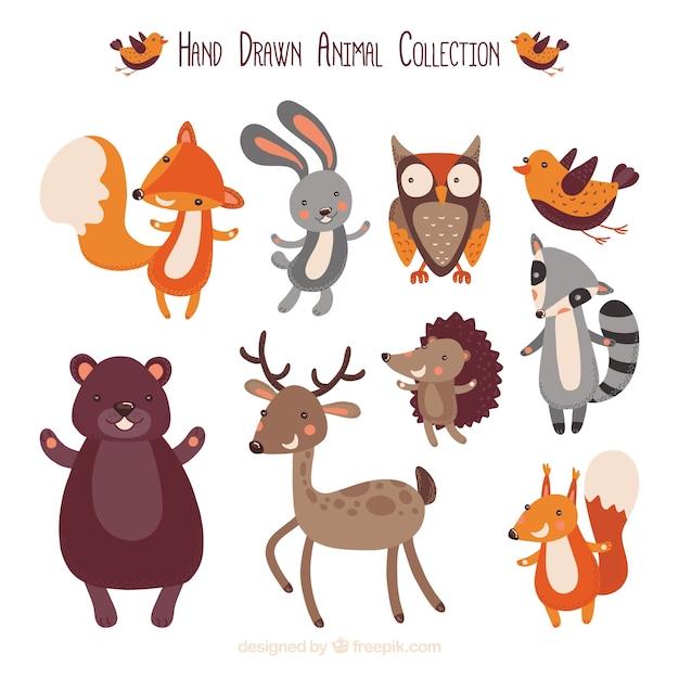 Conjunto desenhado mão de animais felizes Vetor grátis