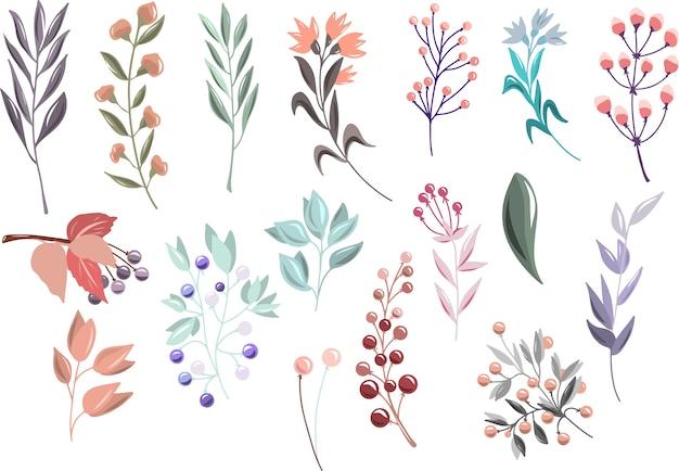 Conjunto floral com ramos e bagas Vetor Premium