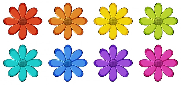 Conjunto isolado de flores Vetor grátis