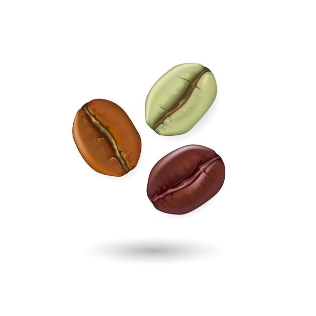 Conjunto realista de grãos de café mostrando vários estágios de torrefação, isolados na ilustração de fundo branco Vetor Premium