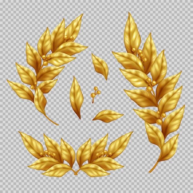 Conjunto realista de ramos de louro dourado e folhas na ilustração isolada transparente Vetor grátis