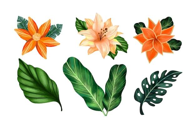 Conjunto tropical de flores e folhas Vetor grátis