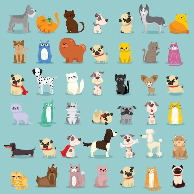 Cool gatos, ratos, porcos e cães. Vetor Premium