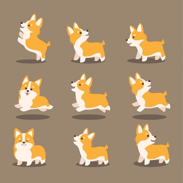 Corgi bonito cão vector conjunto de ilustração Vetor Premium