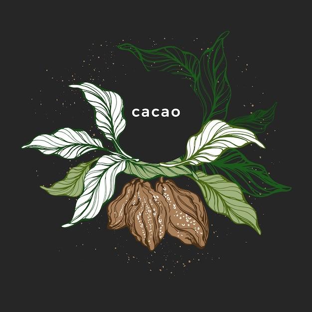 Coroa de cacau. mão desenhada árvore botânica. alimentos orgânicos doces Vetor Premium