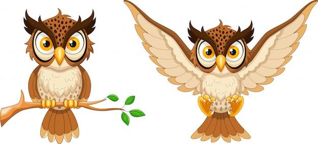 Coruja de desenhos animados, sentado no galho de árvore e coruja voadora Vetor Premium