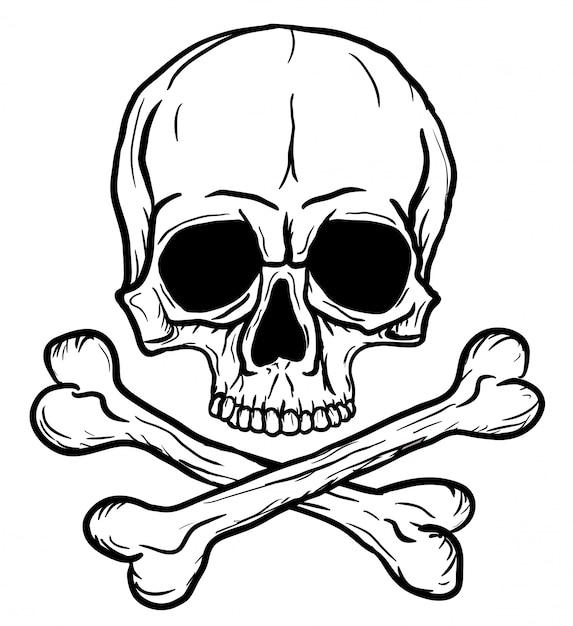 Crânio e ossos cruzados isolados Vetor Premium