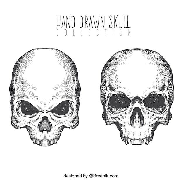 Crânios desenhados mão Vetor grátis