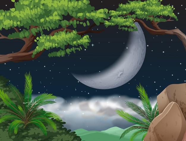 Cresent lua sobre a selva Vetor Premium