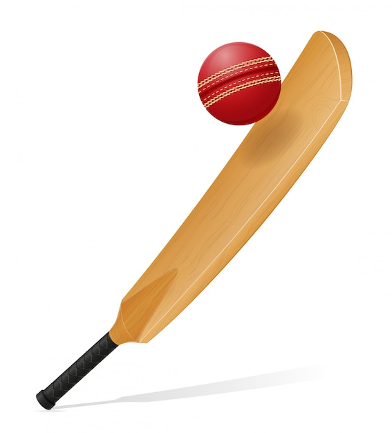 Cricket, morcego, e, bola, vetorial, ilustração Vetor Premium