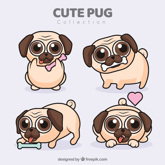 Cute pugs com design plano Vetor grátis