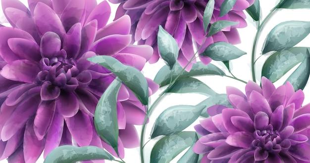 Dahlia purple flowers banner aquarela Vetor Premium