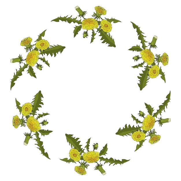 Dandelion flowers circle ornament Vetor Premium