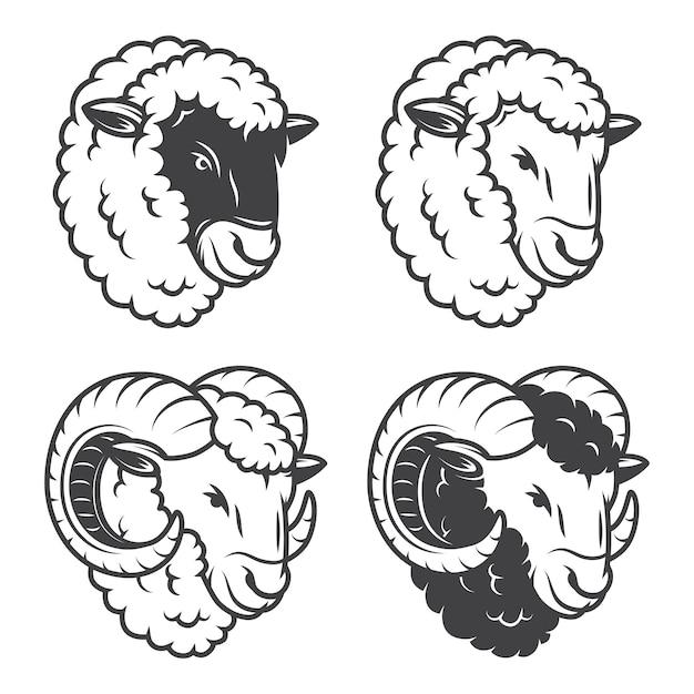 De 4 cabeças de ovelhas e carneiros. monocromático, isolado no fundo branco. Vetor grátis