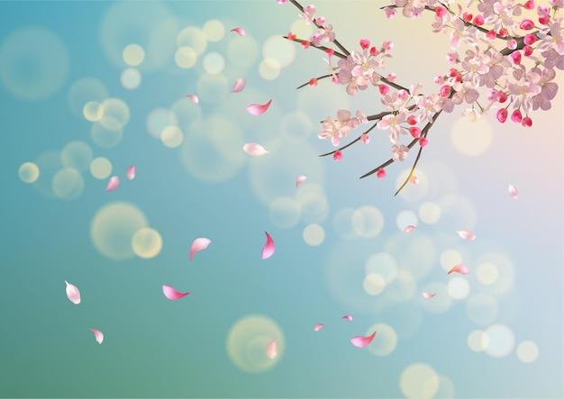 De fundo vector com flor de cerejeira da primavera. filial de sakura na primavera com pétalas caindo Vetor Premium